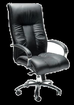 Big Boy Executive Chair